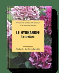 Hydrangee: la struttura post thumbnail